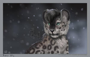Snow Lily by balaa