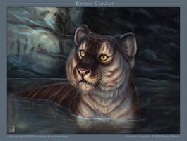 Ebon Sunset by balaa