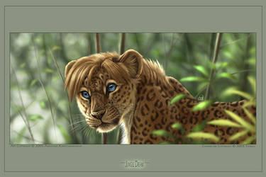 Jungle Dream by balaa