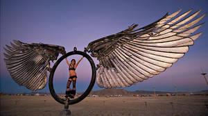 Wings by NVMark