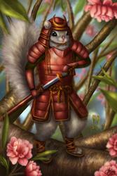 Samurai Squirrel by belldandy105
