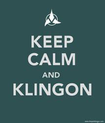 Keep Calm and Klingon by pinktoque