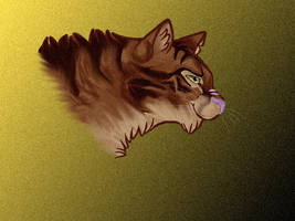 Tigerstar, Again by FirehCat