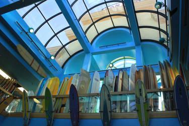 Ron John's Surf Shop by create-a-name-dotcom