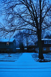 New Jersey suburbs, first snow of the season. by AdamChristopherRudd