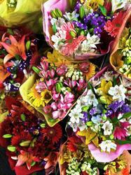 Flowers on Clement Street by AdamChristopherRudd