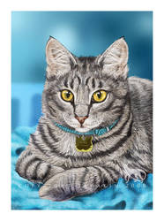 Elvis the Cat by Tamakin
