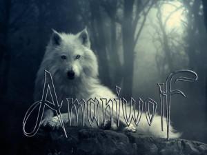 Amaniwolf's Profile Picture
