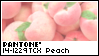 PANTONE 14-1229 Peach Nectar by King-Lulu-Deer