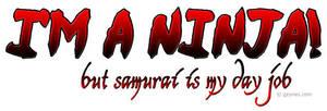 :: I'm a Ninja :: by Gezusfreek
