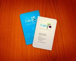 Ninfa business card concept1 by 16F