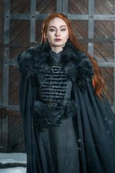 Sansa Stark by GrangeAir