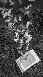200 butterflies sculpture - part 3 by llifi-kei