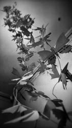 200 butterflies sculpture - part 5 by llifi-kei
