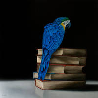 Parrot and books by deRaat