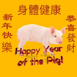Happy Year of the Pig! by Jangirl83