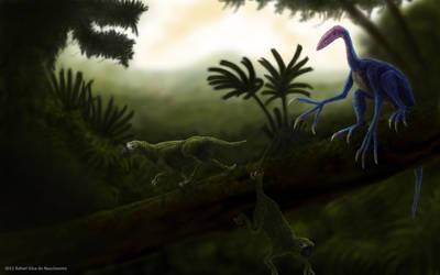 Jungle by RSNascimento