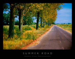 Summer Road by Andrejz