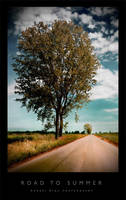 Road To Summer by Andrejz