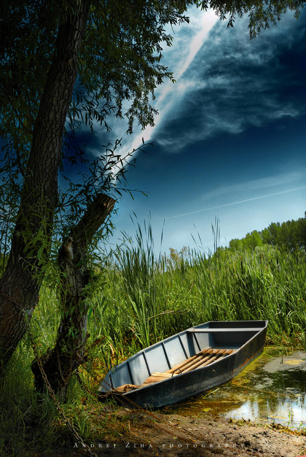 Boat by Andrejz