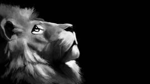 Lion by xLilu
