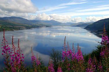 Ireland by BlueFire-Siren