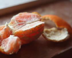 citrus noms by redkitestring
