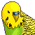 f2u parakeet icon by Official-Fallblossom