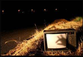 Abandoned Shadowpuppets by s9
