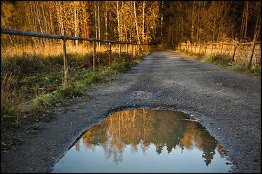 Autumn path by koposs