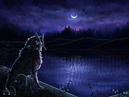 Follow the moon by Ulfarna