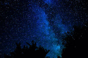 stars by LuxLucie
