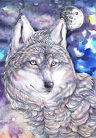 Calm Wolf Moon by dawndelver