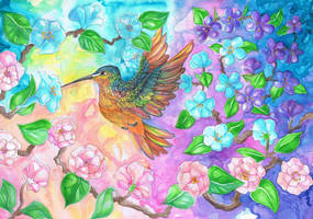 Colorful Humming Bird by dawndelver