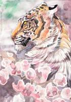 Tiger Blossom 3 by dawndelver