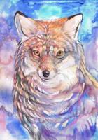 Beautiful Mr Fox by dawndelver