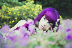 soft flower by prettyhatepictures