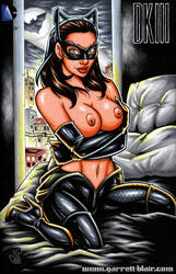 Naughty DKR Catwoman cover by gb2k