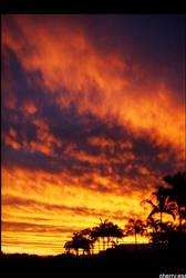 Australian Sunset by cherryjess