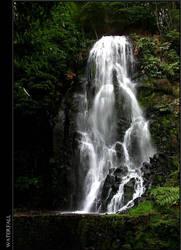 Waterfall by PainIsBeautiful