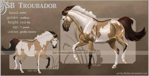 Troubador - ref commission by Shekla