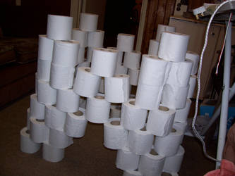 Loo Roll Fort by shardyhaha