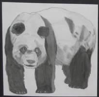 Panda: Realistic by pandastarr