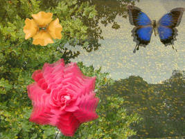 Flowers by pandastarr