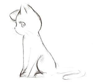 iulmi's Profile Picture