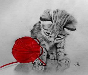 Kitty Playing by annakoutsidou