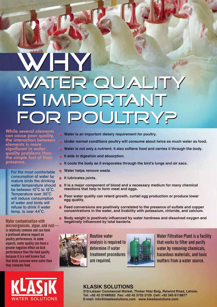 Klasik Quality Poultry Water by zeeshan83 on DeviantArt
