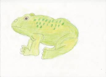 Frog by adampanak
