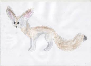 Fennec Fox by adampanak