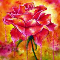 Love by AnnMarieBone